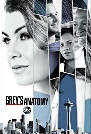Greys Anatomy Season 14 123movies