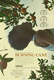 Burning Cane HD Streaming