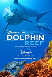 Watch HD Movie Dolphin Reef