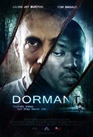 Dormant HD Streaming
