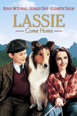Watch HD Movie Lassie Come Home