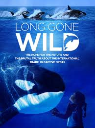 Watch HD Movie Long Gone Wild