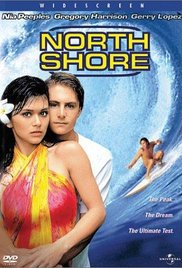 The Perfect Wave streaming full movie with english subtitles