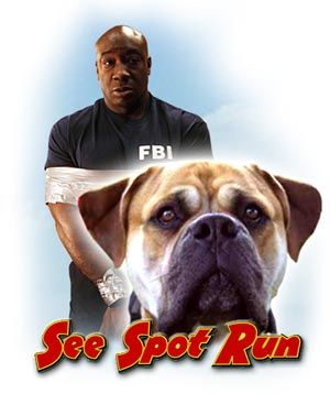 See Spot Run Movie HD watch