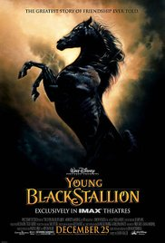 Watch Movie The Young Black Stallion