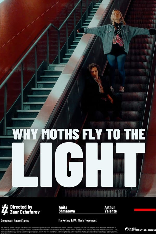 Watch Movie Why Moths Fly to the Light