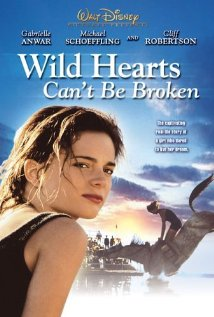 The Broken Hearts Gallery streaming full movie with english subtitles