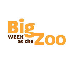 Big Week at the Zoo Season 1 123Movies
