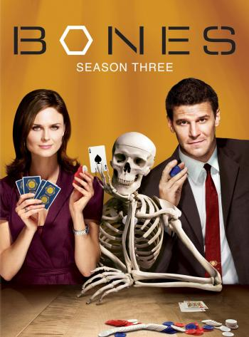 Watch Series Bones Season 3
