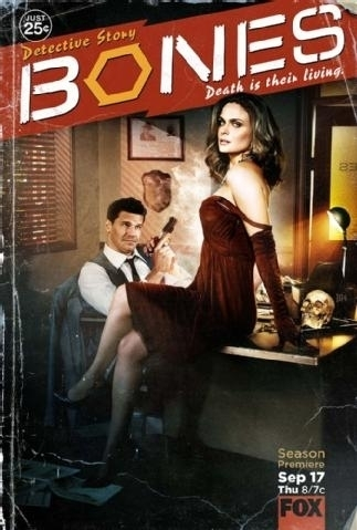 Watch Series Bones Season 5