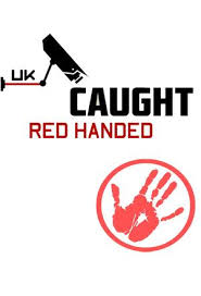 Watch Series Caught Red Handed Season 5
