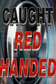 Watch Series Caught Red Handed Season 7