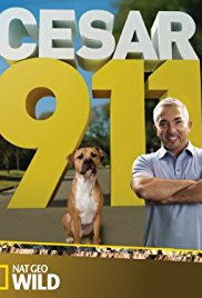 Cesar 911 season 4 Season 1 123Movies
