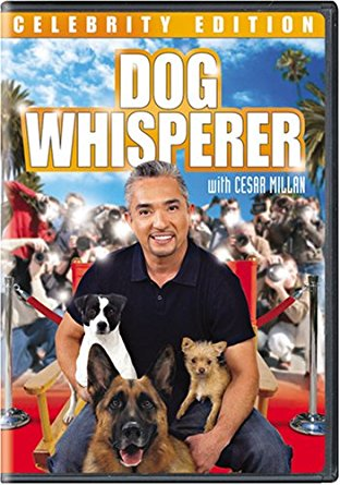 Watch Series Dog Whisperer with Cesar Millan Season 4