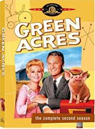 Green Acres season 2 Season 1 123streams