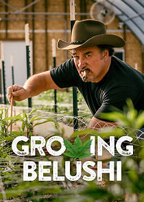 Growing Belushi Season 1 123Movies