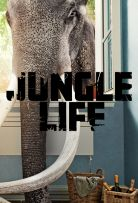 Jungle Life Season 1 123Movies