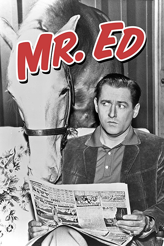 Mister Ed Season 1 123Movies