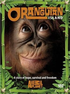 Watch Series Orangutan Island Season 1