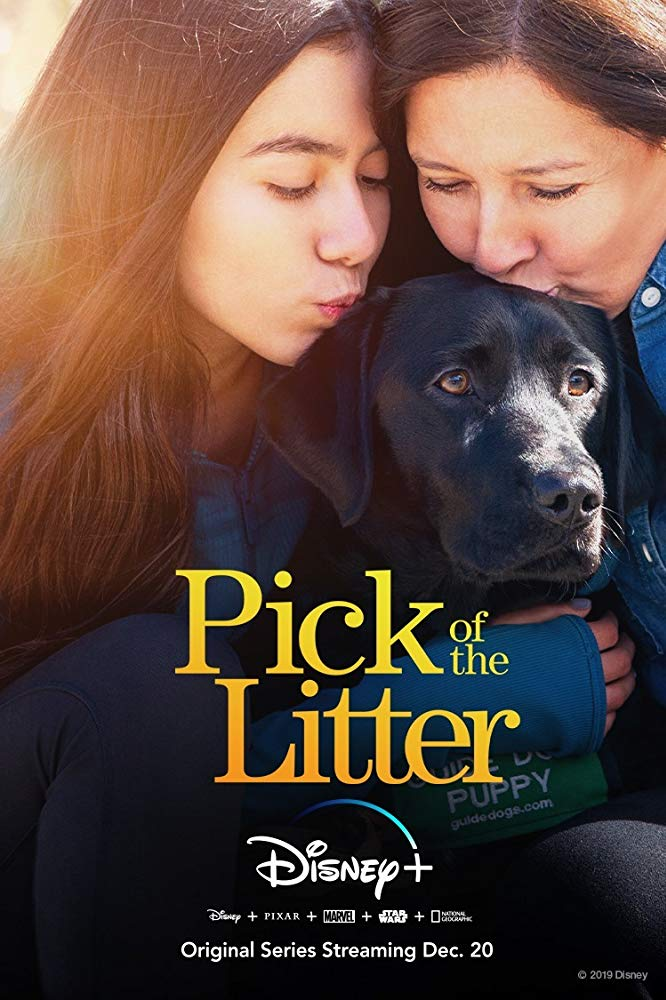 Pick of the Litter Season 1