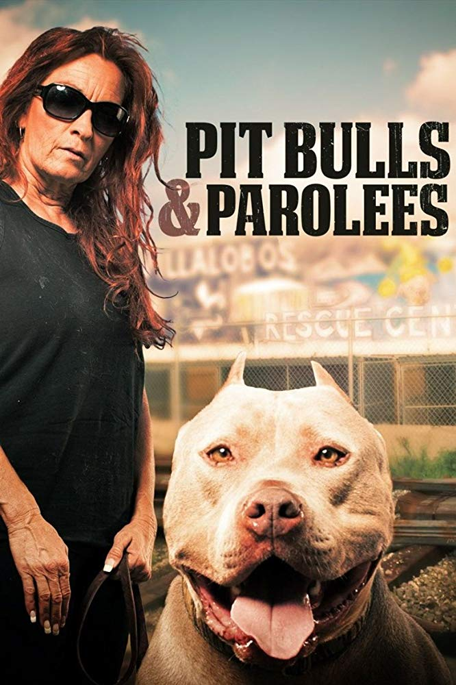 Pit Bulls and Parolees Season 14 123Movies