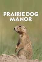Prairie Dog Manor Season 1 123Movies