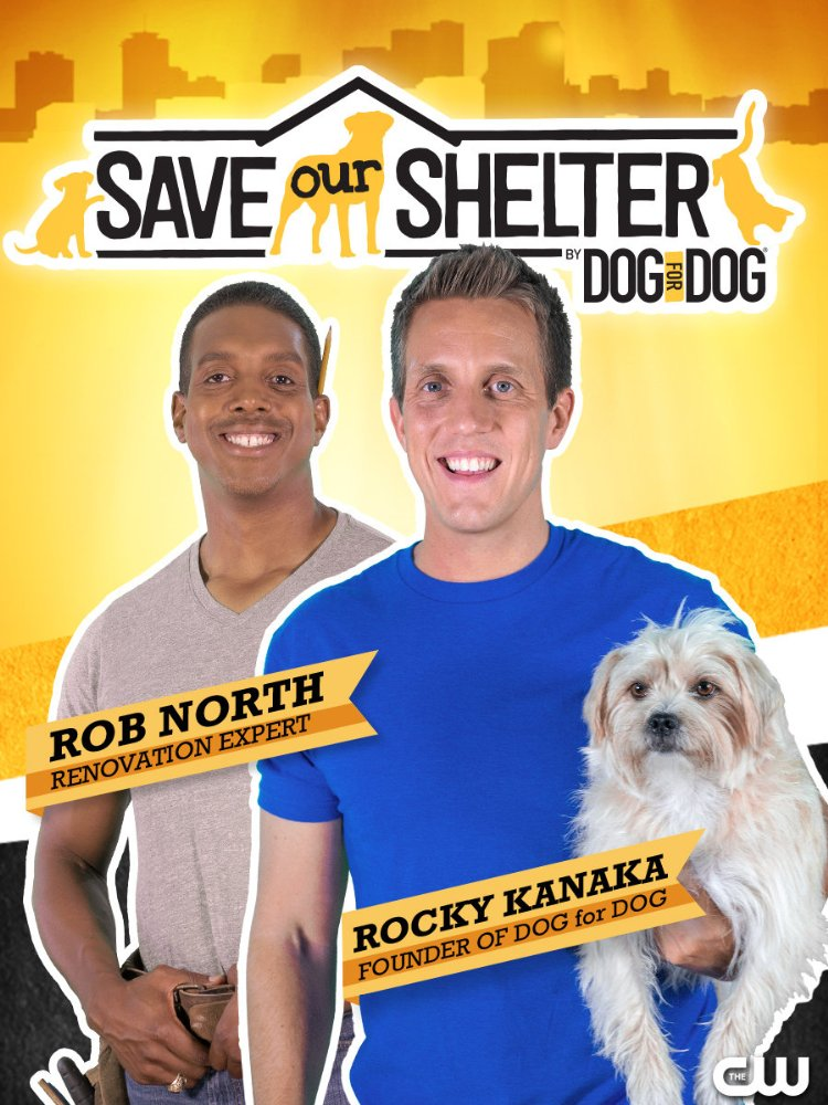 Save Our Shelter Season 2  123Movies