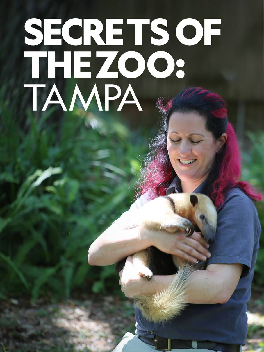 Secrets of the Zoo Tampa Season 2 123Movies