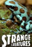 Strange Creatures Season 2 123Movies