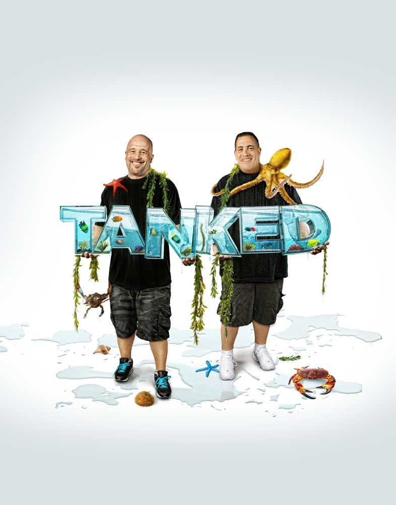 Tanked Season 10  solarmovie