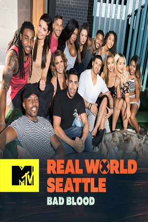 The Real World Season 32 123Movies