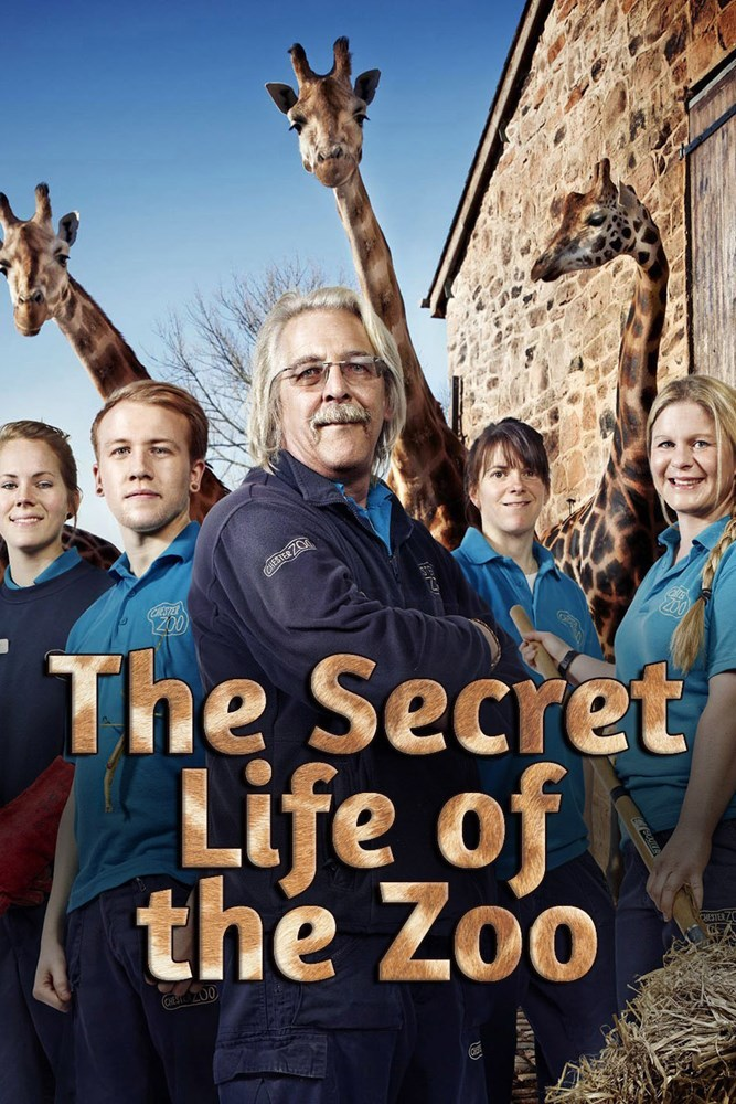 Watch Series The Secret Life Of The Zoo Season 2