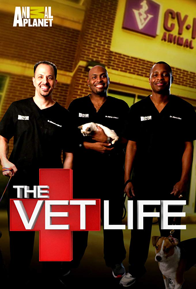Watch Series The Vet Life Season 3