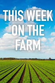 This Week on the Farm Season 1 123Movies