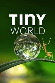 Tiny World Season 1 123Movies