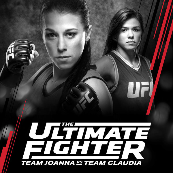 Watch Series Ultimate Fighter Season 25