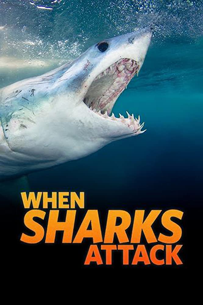 When Sharks Attack Season 6 123Movies